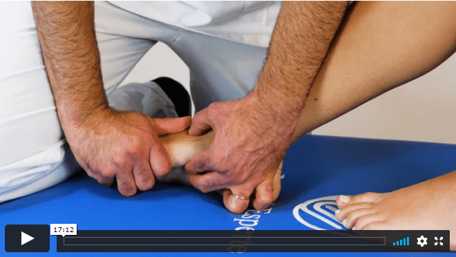 Video 11 - ANKLE, FOOT