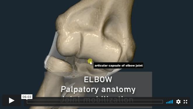 Video 7 - ELBOW