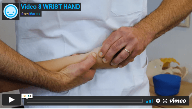 Video 8 - WRIST, HAND